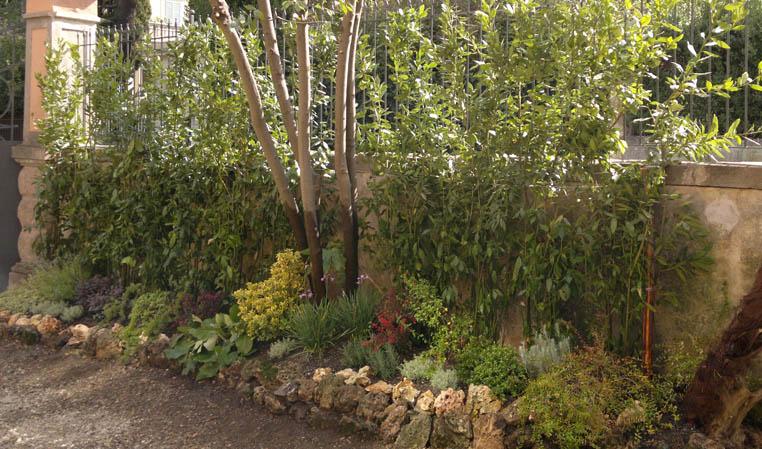 Il giardino di daniele parchi e giardini for Progettazione giardini lavoro